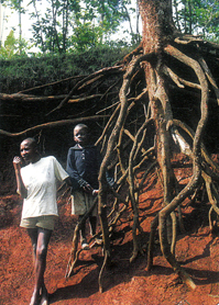 Erosion in Kenya