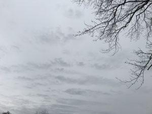 Gray February Sky