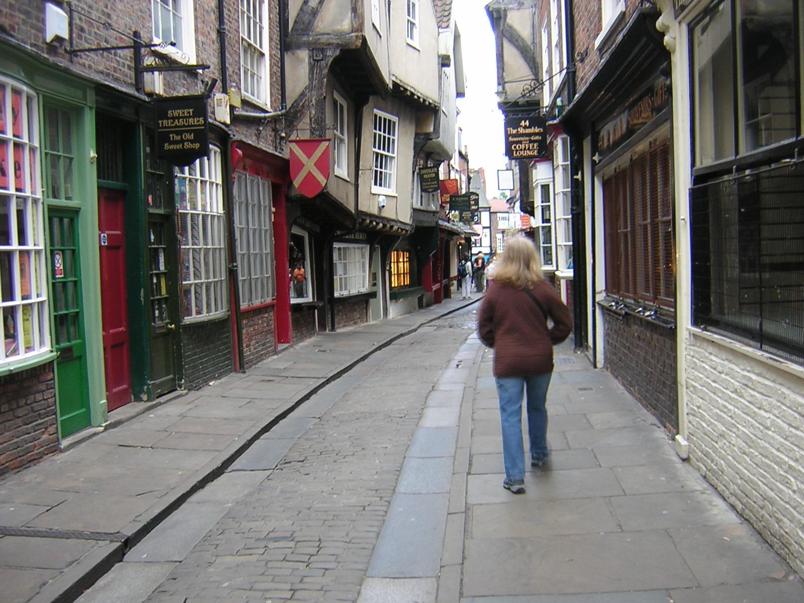 Yorkshire Shambles 2009