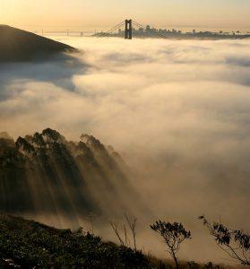Bay Area Fog