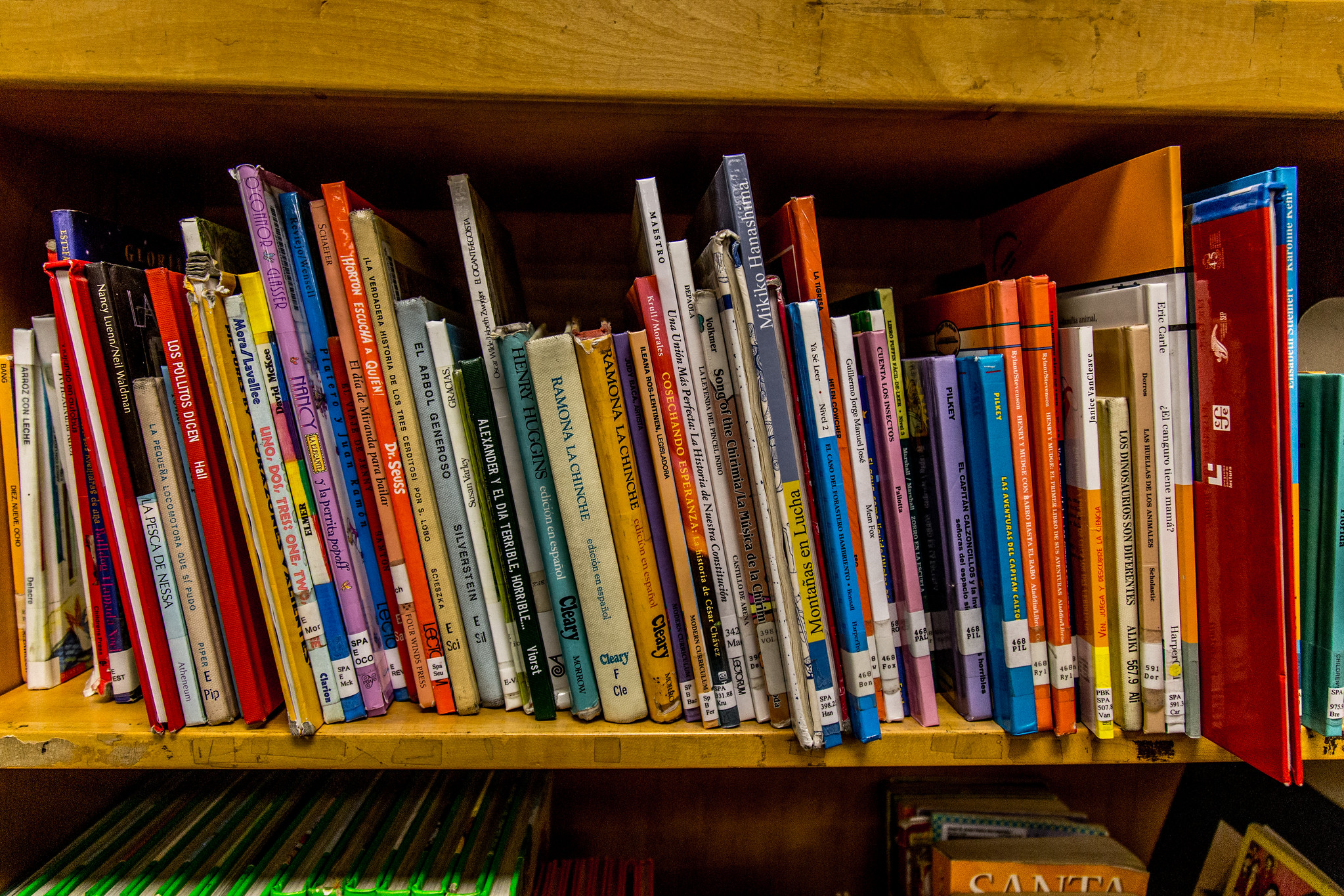 Children's books on a library bookshelf with spines showing
