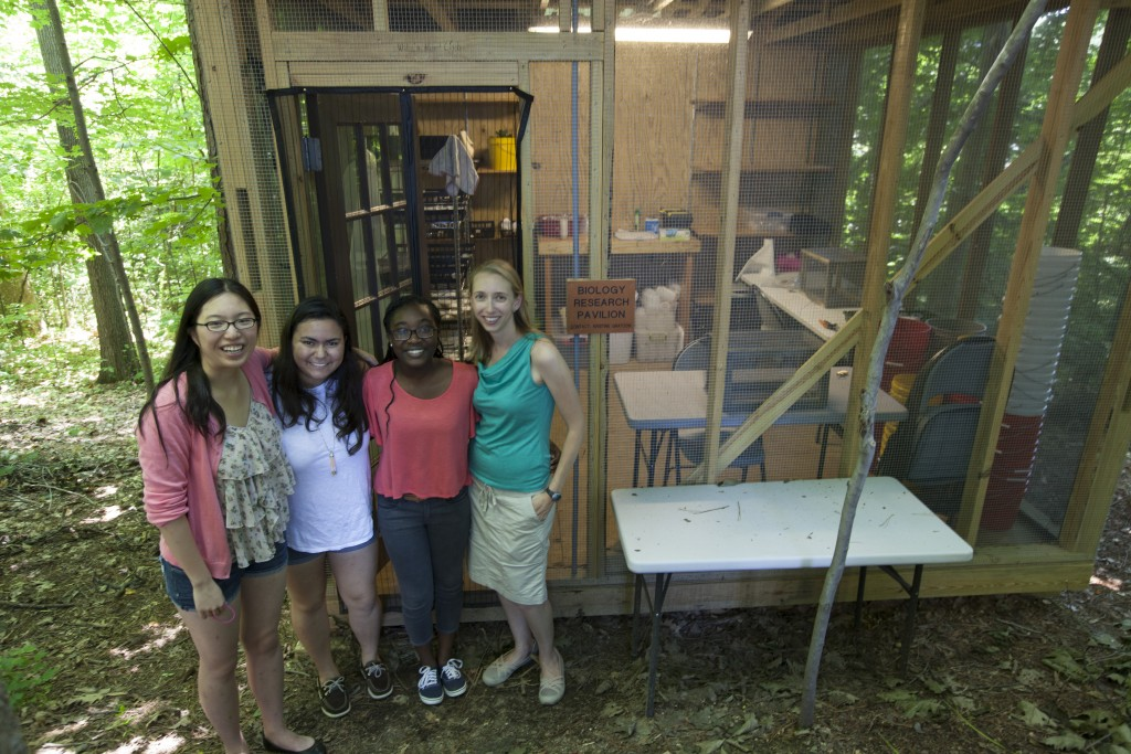 Summer Research at UR, 2015 (L-R: Amber Yang, Melisa Quiroga-Herrera, Nana Banahene, Kristine Grayson; Credit: Gordon Schmidt)