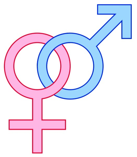Gender Symbols Male Female Signs11 Heroes What They Do Why We