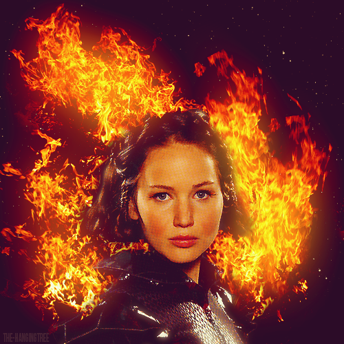 Katniss-Everdeen-katniss-everdeen-30496661-500-500