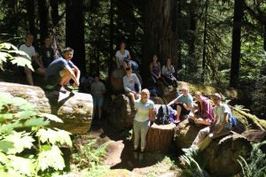 Lodgers bond over wheat thins, cheese and PB&J while exploring old growth forests in Oregon.
