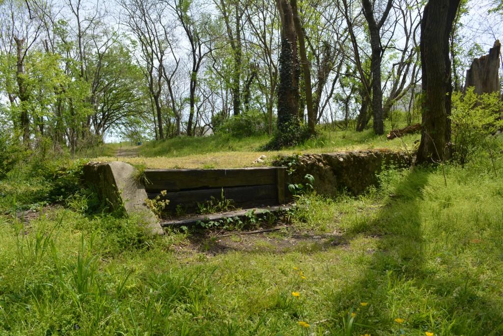 Remnants of a Fulton past peek through the verdure of Gillies Creek Park. Photo by Garrett Fundakowski.